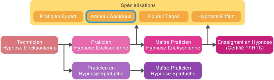 Formation Anneau Gastrique Hypnotique Tunisie
