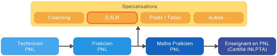 Formation Deep Neural Repatterning Tunisie